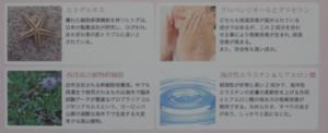 再凛生(さりお)とホワイトローション 白透水【トライアル】セット