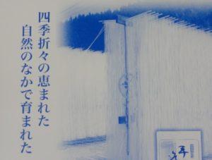 小豆島 オリーブ素麺